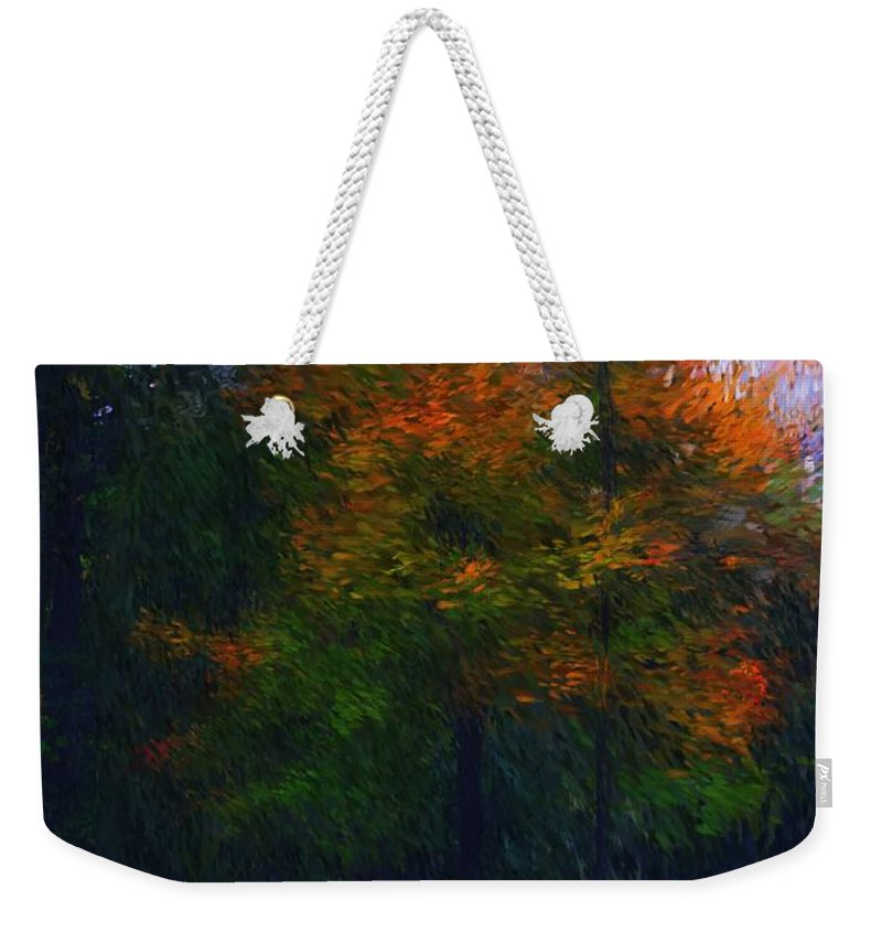Autumn Weekender Tote Bag featuring the photograph A Walk In The Park by David Lane