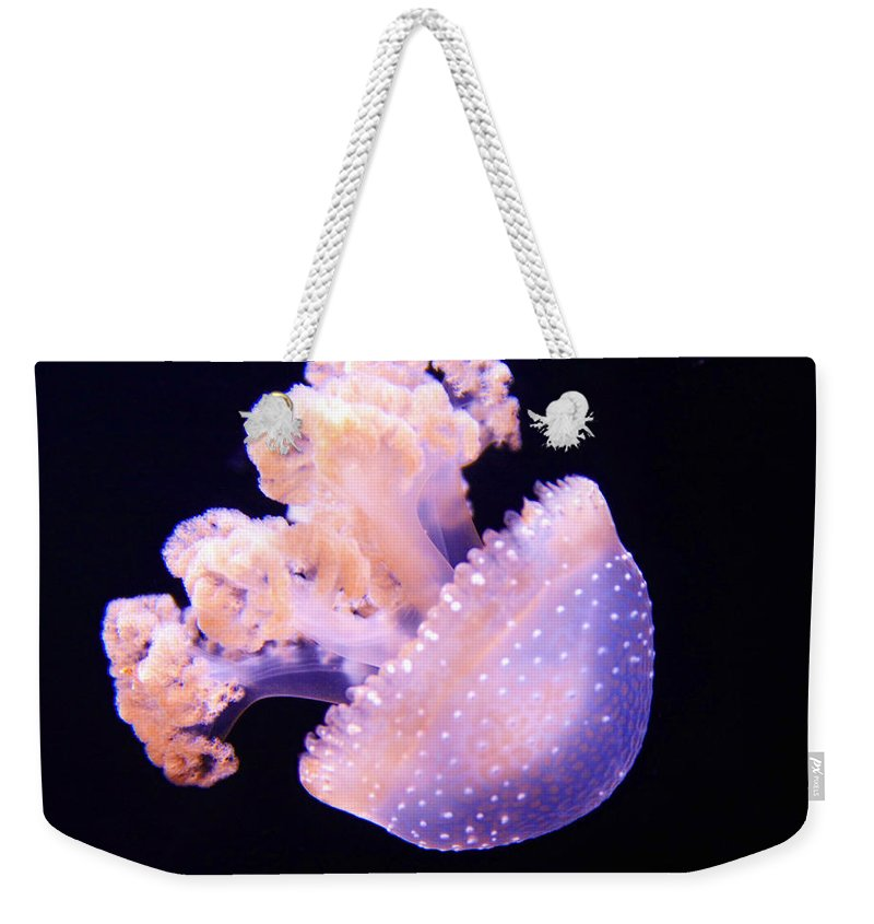Jellyfish Weekender Tote Bag featuring the photograph A Word by Mitch Cat