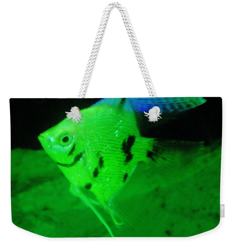 Fish Weekender Tote Bag featuring the photograph A Yellow Fish by Jeff Swan