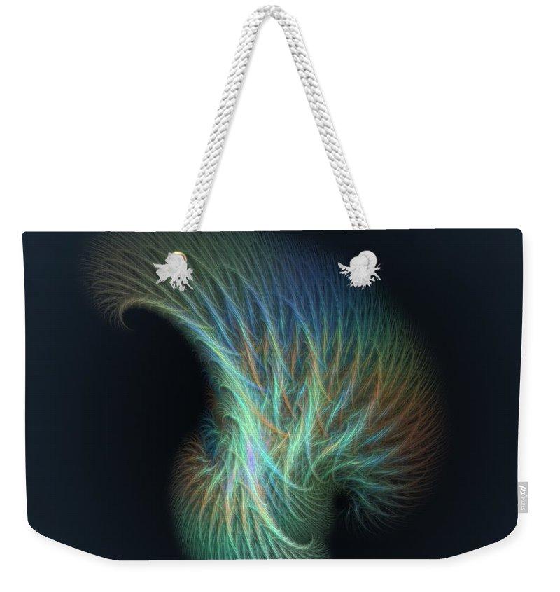 Fractal Weekender Tote Bag featuring the digital art a013 Shaving Brush Of An Elf by Drasko Regul