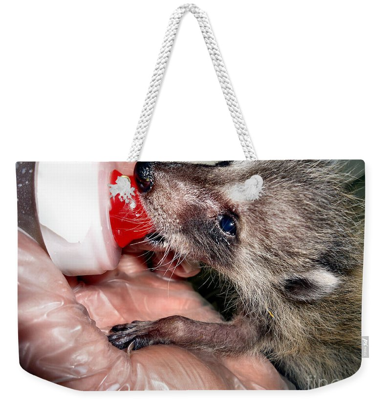 Wild Weekender Tote Bag featuring the photograph Abandoned And Raised by Art Dingo