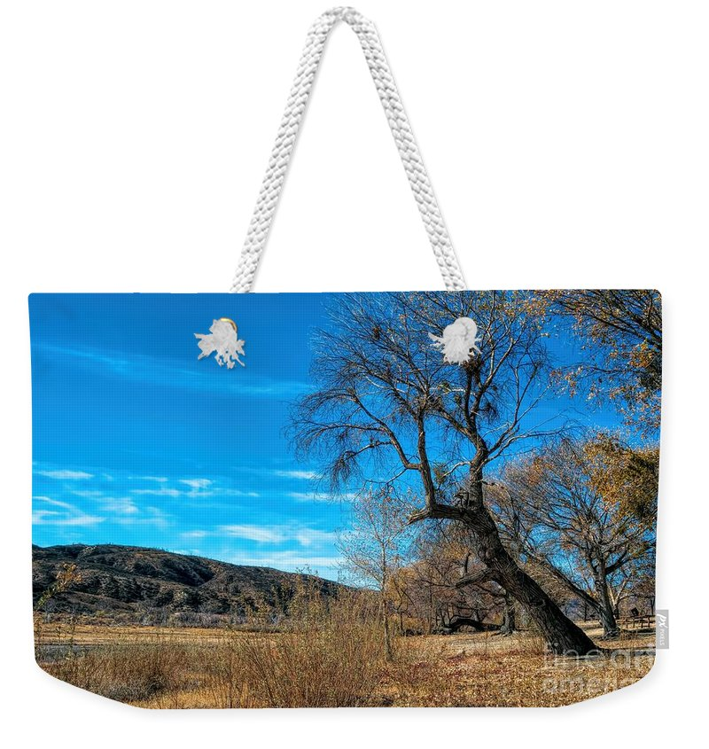 Elizabeth Lake; Sierra Pelona Mountains; Leona Valley; Yellow; Blue; Brown; Sky; Mountain; Trees; Picnic Tables; Abandoned Park Weekender Tote Bag featuring the photograph Forgotten Park by Joe Lach