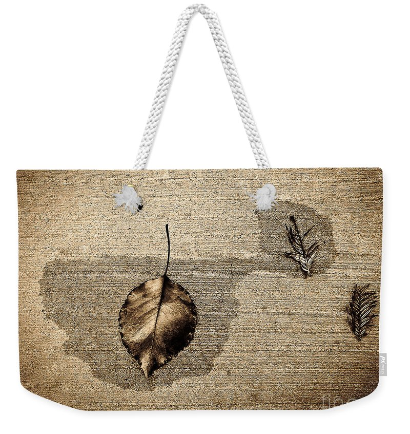 Nature Weekender Tote Bag featuring the photograph About Acquiesce by Fei A