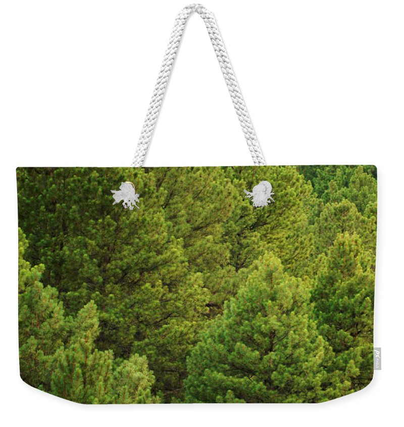 House Weekender Tote Bag featuring the photograph Above It All by Jill Reger