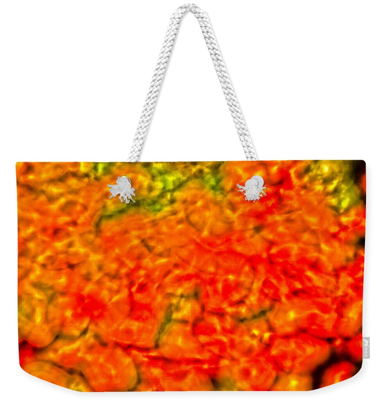Abstract Weekender Tote Bag featuring the digital art Abstract 1 by John Richardson
