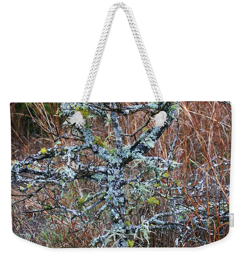 Abstract Weekender Tote Bag featuring the photograph Abstract And Lichen by Marilyn Hunt