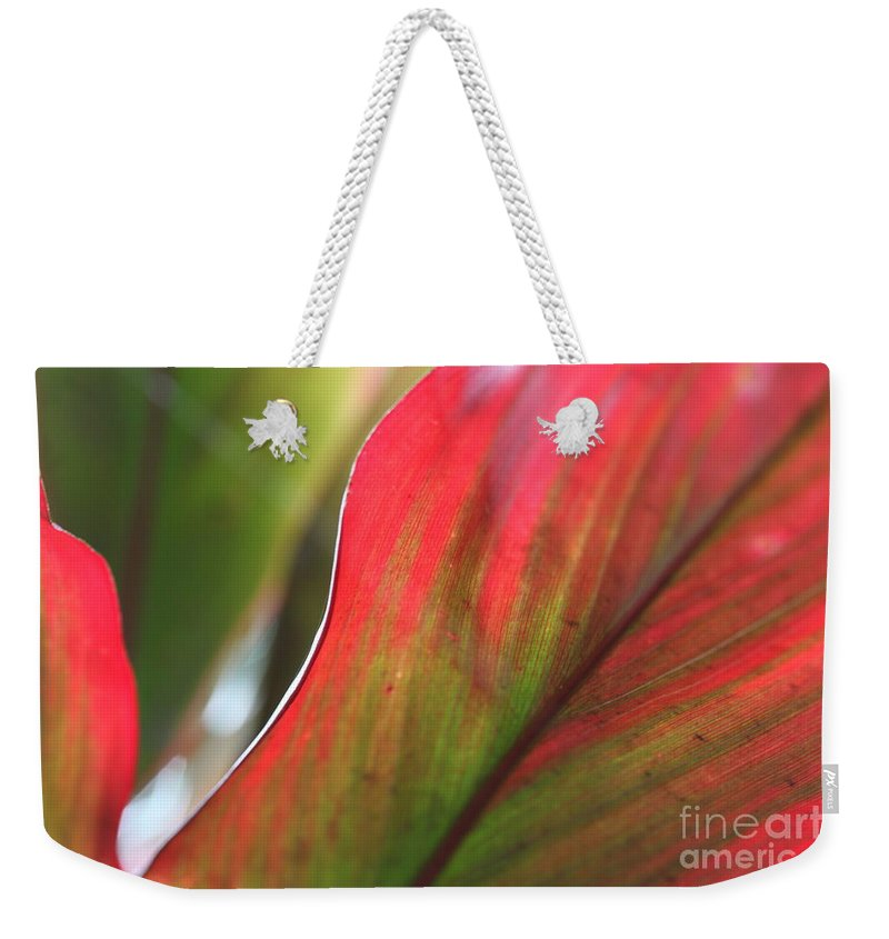 Pink Weekender Tote Bag featuring the photograph Abstract Leaves by Nadine Rippelmeyer