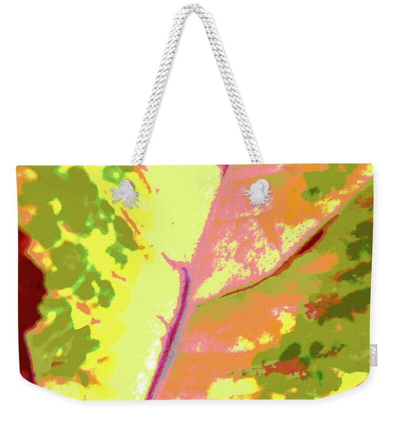 Abstract Weekender Tote Bag featuring the photograph Abstract Summer's End by Regina Geoghan