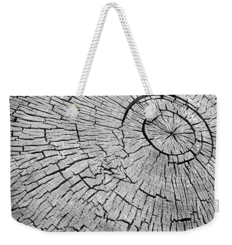 Trees Weekender Tote Bag featuring the photograph Abstract Tree Cut by James BO Insogna
