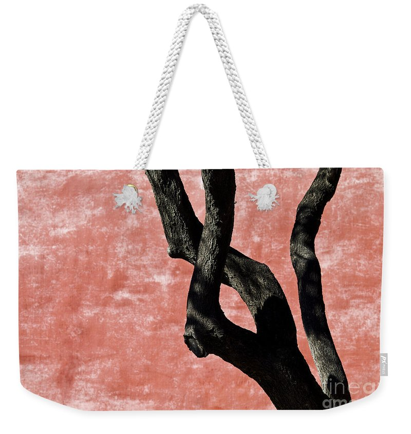 Abstract Weekender Tote Bag featuring the photograph Abstract Tree Trunk by Ray Laskowitz - Printscapes