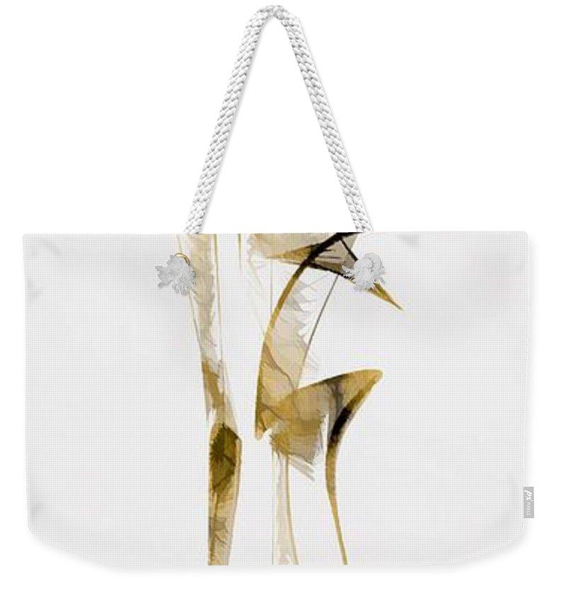 Abstraction Weekender Tote Bag featuring the digital art Abstraction 2937 by Marek Lutek