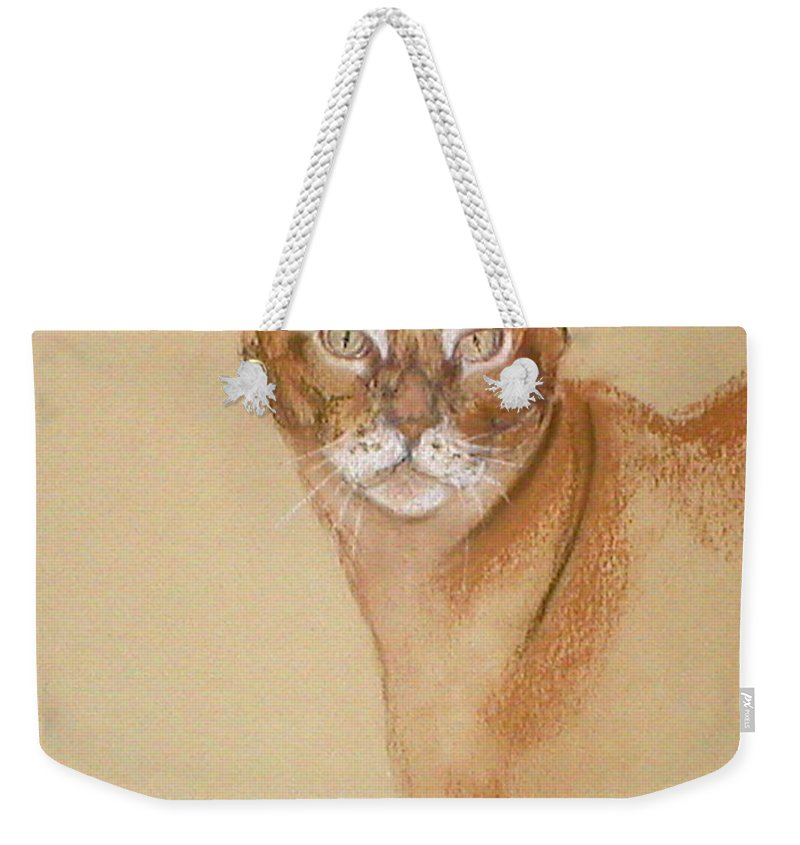 Pastel Weekender Tote Bag featuring the drawing Abyssinian by Cori Solomon