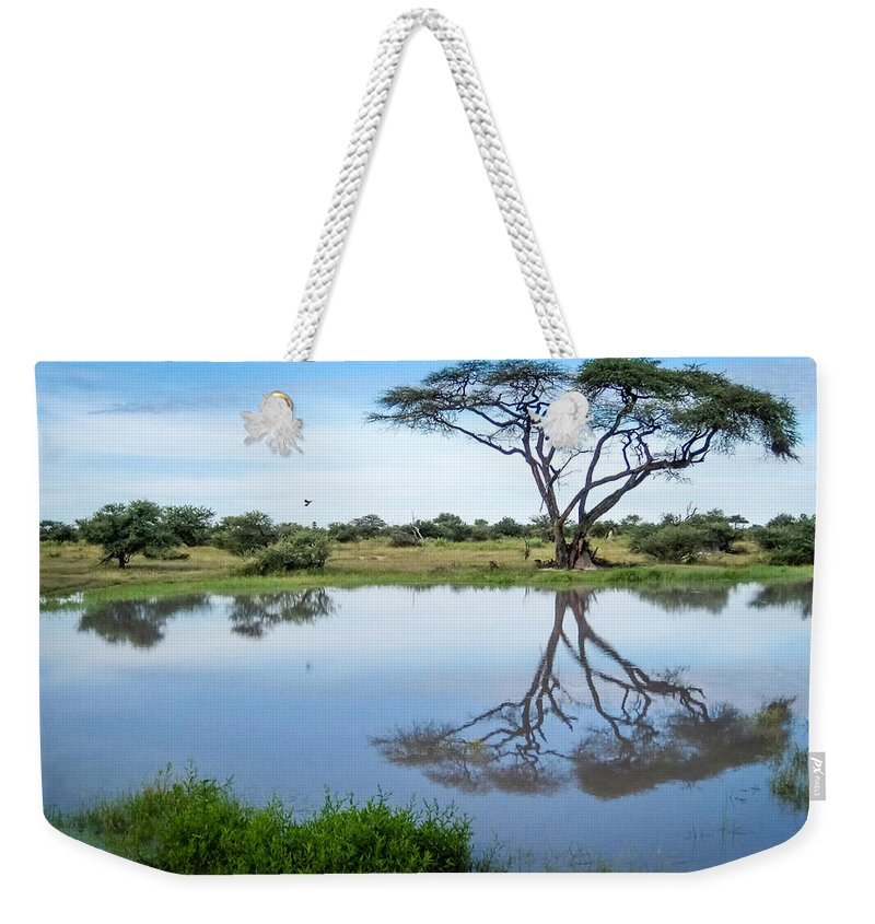 1 Pid Color Open Weekender Tote Bag featuring the photograph Acacia Tree Reflection by Gregory Daley MPSA