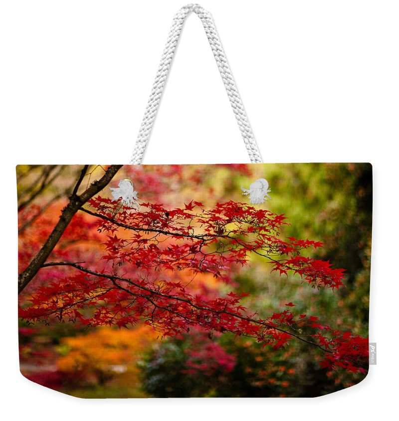 Acer Weekender Tote Bag featuring the photograph Acer Colors by Mike Reid