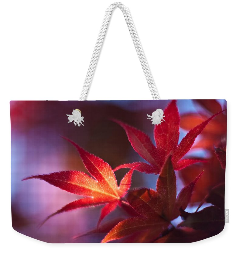 Acer Weekender Tote Bag featuring the photograph Acer Kaleidoscope by Mike Reid