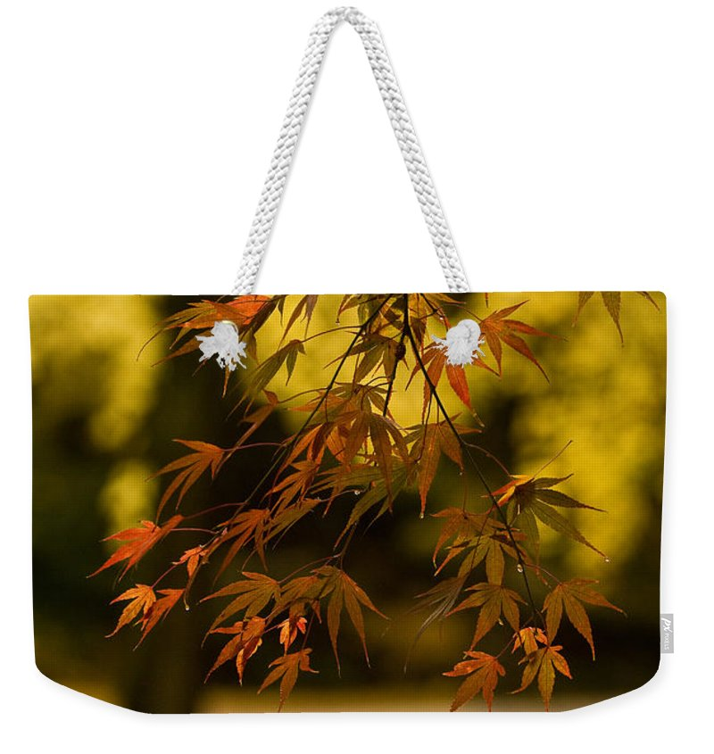 Acer Weekender Tote Bag featuring the photograph Acers Turning by Mike Reid
