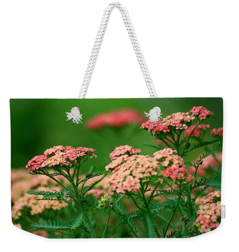Yarrow Weekender Tote Bag featuring the photograph Achillae's Heel by Marla McFall