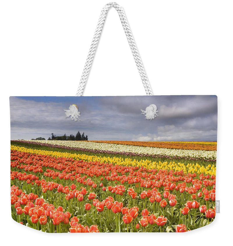 Tulips Weekender Tote Bag featuring the photograph Across Colorful Fields by Mike Dawson