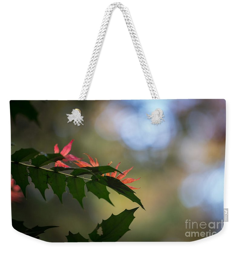 Fall Colors Weekender Tote Bag featuring the photograph Adding Color To The Holly by Mike Reid