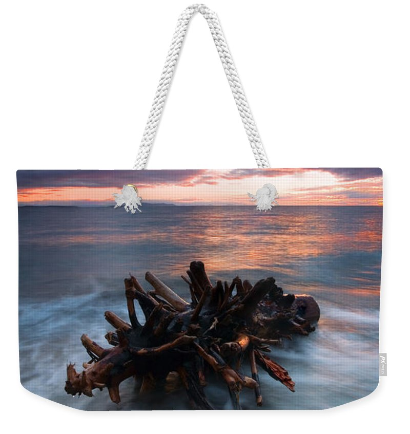 Stump Weekender Tote Bag featuring the photograph Adrift by Mike Dawson