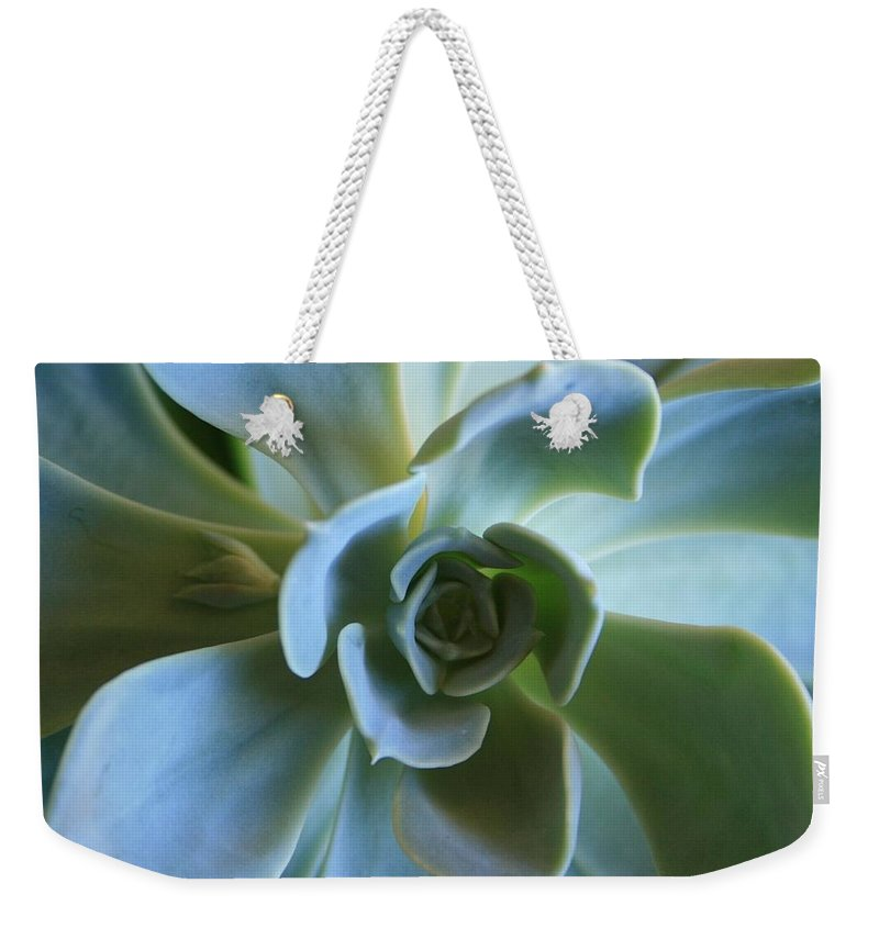 Aeonium Weekender Tote Bag featuring the photograph Aeonium by Marna Edwards Flavell
