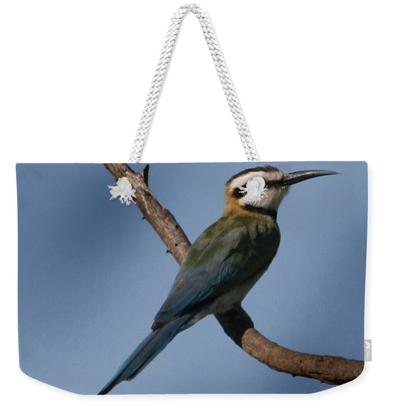 Bee Eater Weekender Tote Bag featuring the photograph African Bee Eater by Joseph G Holland