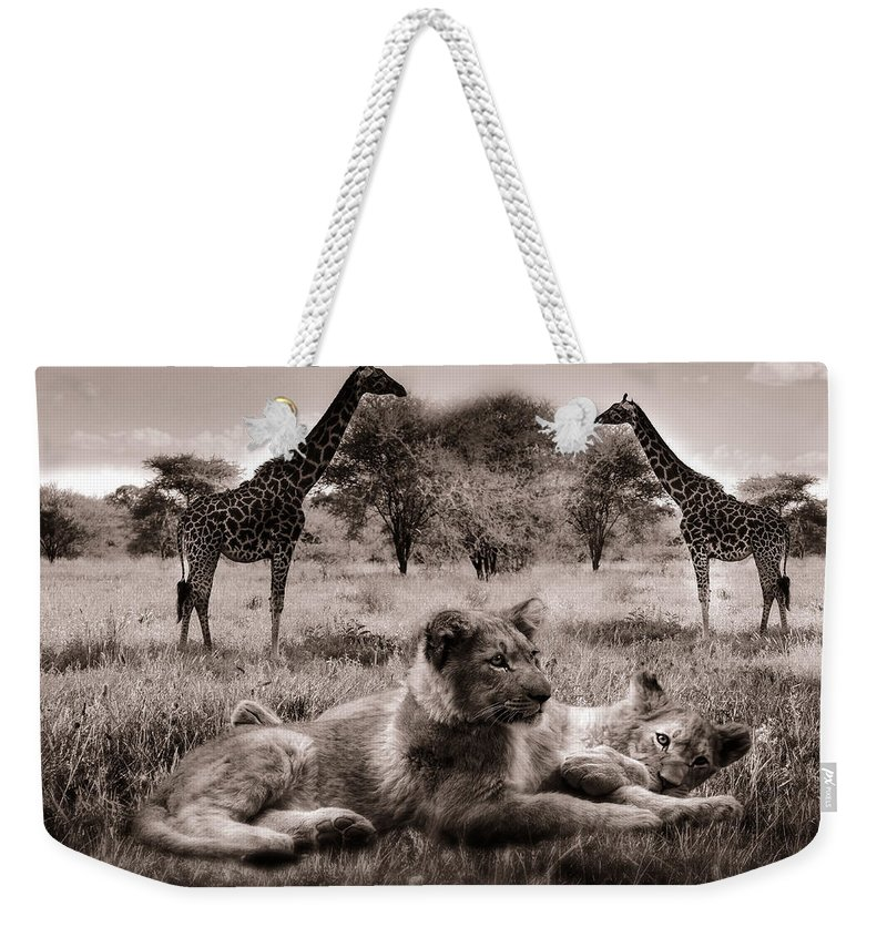 Lions Weekender Tote Bag featuring the photograph African Life by Christine Sponchia