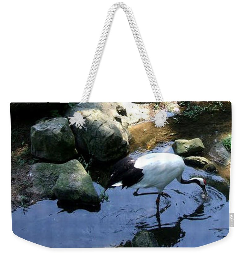 Weekender Tote Bag featuring the photograph After A Long Wait by Asha Sudhaker Shenoy