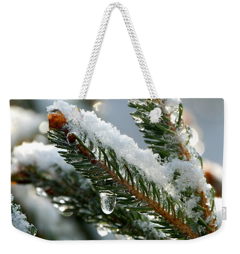 Winter Weekender Tote Bag featuring the photograph After Christmas by Lisa Kane