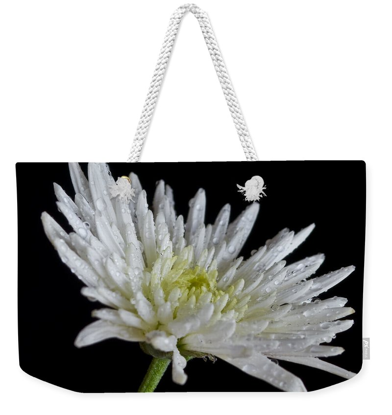 Autumn Weekender Tote Bag featuring the photograph After Rain by Svetlana Sewell