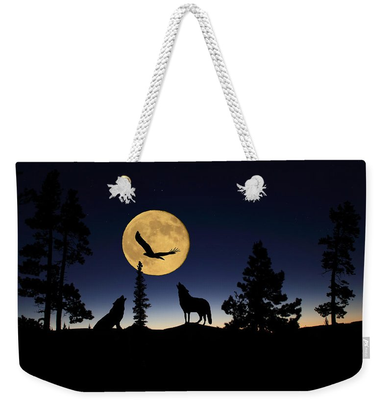 Bald Eagle Weekender Tote Bag featuring the photograph After Sunset by Shane Bechler