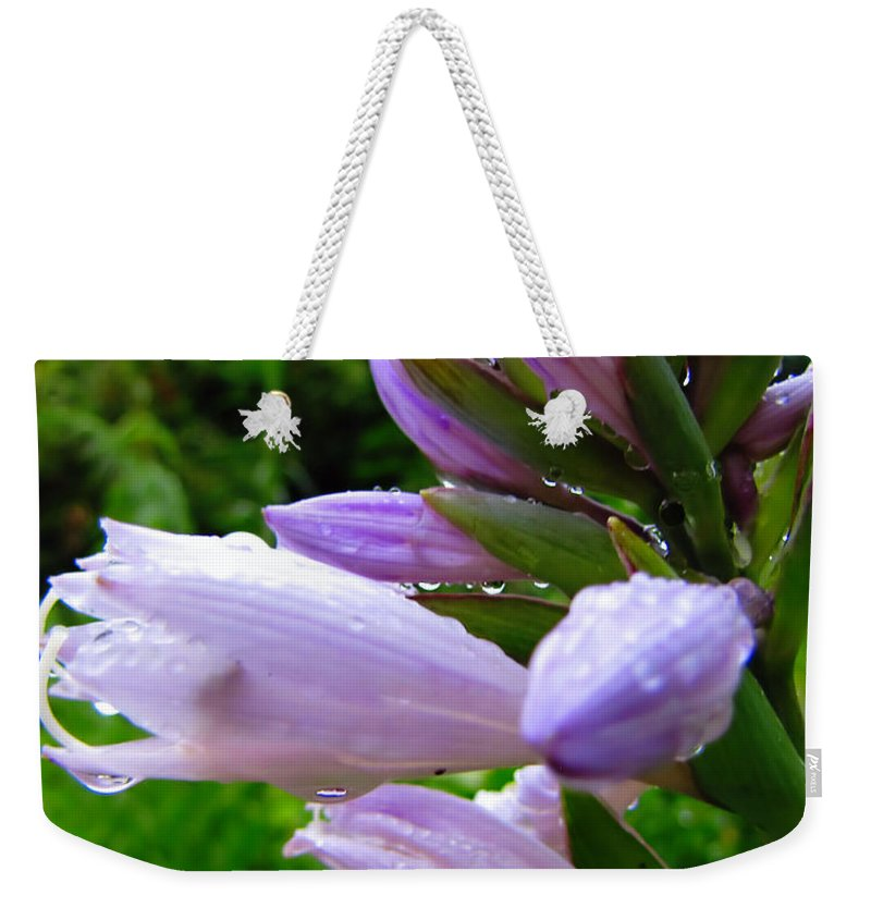 Hosta Weekender Tote Bag featuring the photograph After The Rain by September Stone