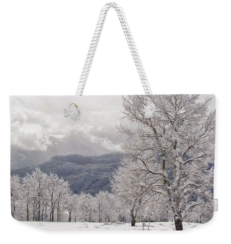 After The Storm Weekender Tote Bag featuring the photograph After The Storm 3 by LeAnne Perry