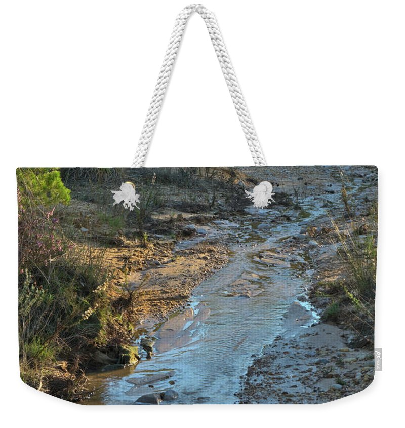 Trees Weekender Tote Bag featuring the photograph After The Storm by Angelo DeVal