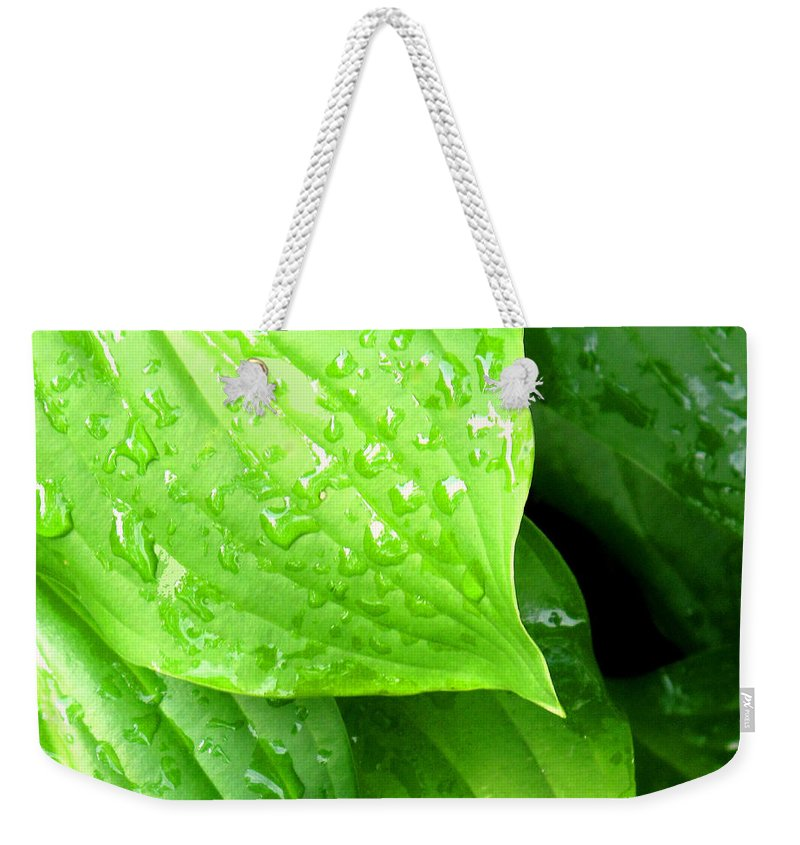 Leaf Weekender Tote Bag featuring the photograph After The Storm by Ian MacDonald