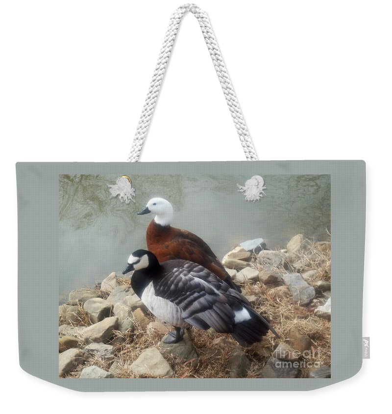 Ducks Weekender Tote Bag featuring the photograph Afternoon Delight by Sandra McClure