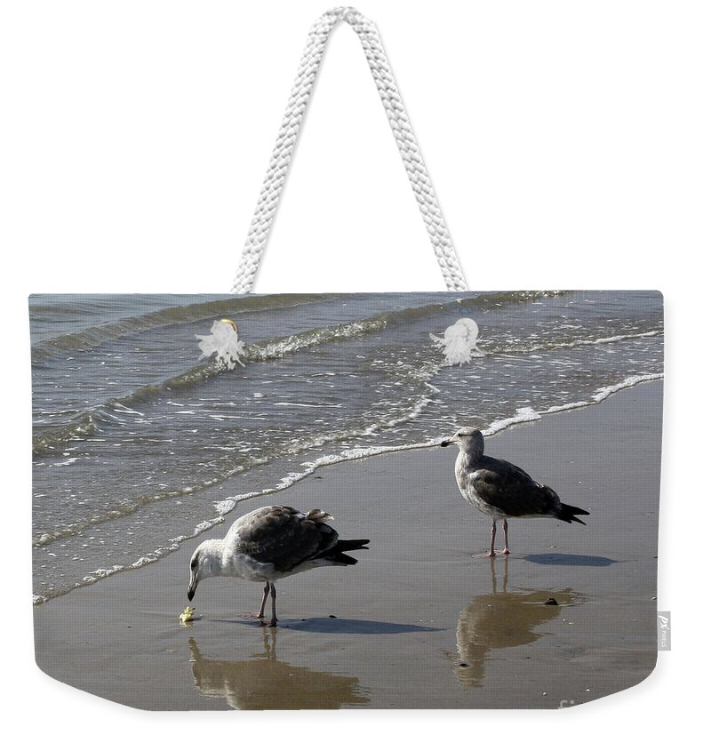 Beach Weekender Tote Bag featuring the photograph Afternoon Snack by Kelly Holm