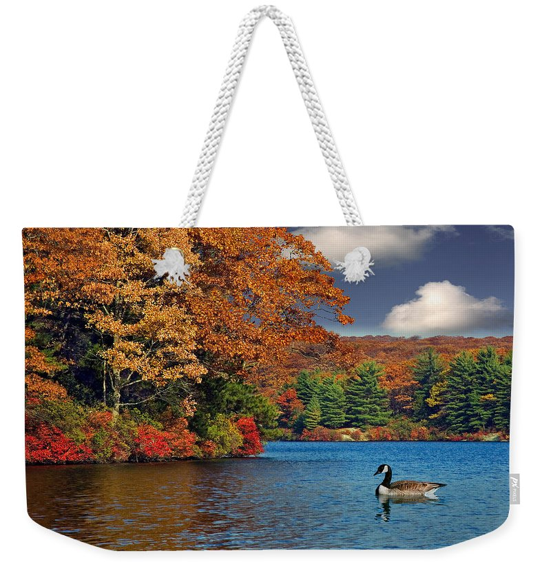 Fall Weekender Tote Bag featuring the photograph Afternoon Swim by Susan Candelario