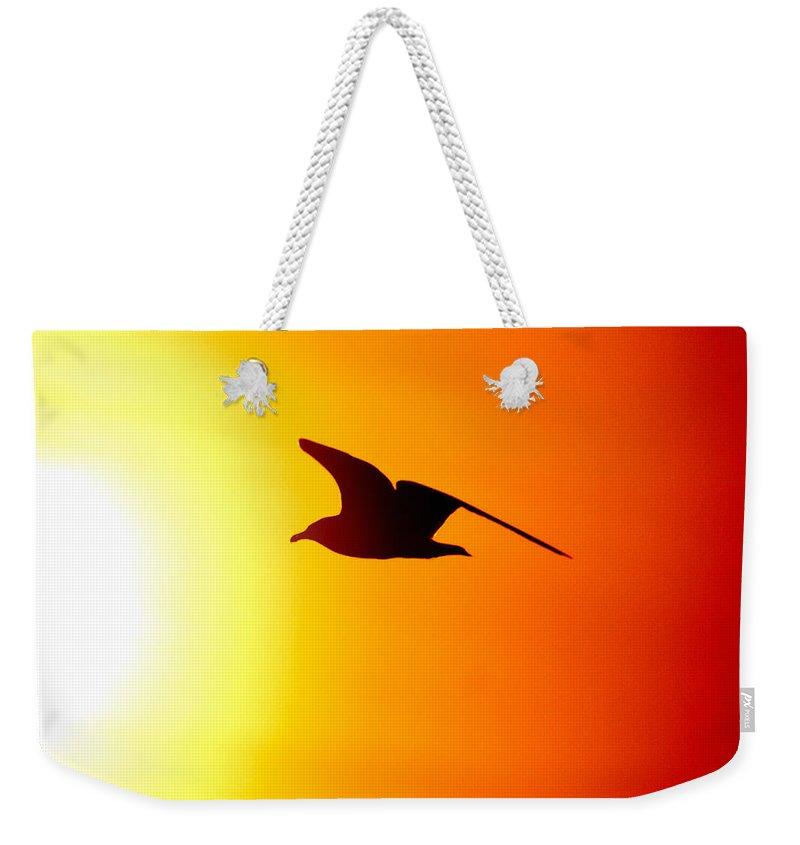 Lehtokukka Weekender Tote Bag featuring the photograph Against The Sun by Jouko Lehto