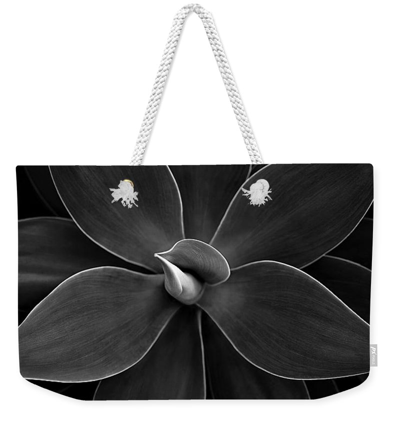 Agave Weekender Tote Bag featuring the photograph Agave Leaves Detail by Marilyn Hunt