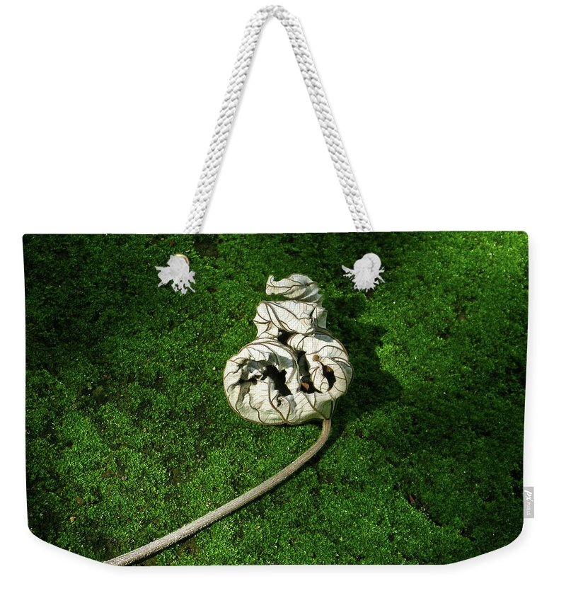 Anguished Weekender Tote Bag featuring the photograph Aguished Leaf by Douglas Barnett