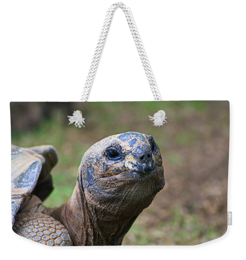 Aldabra Tortoise Weekender Tote Bag featuring the photograph Aldabra Giant Tortoise's Portrait by Selena Wagner