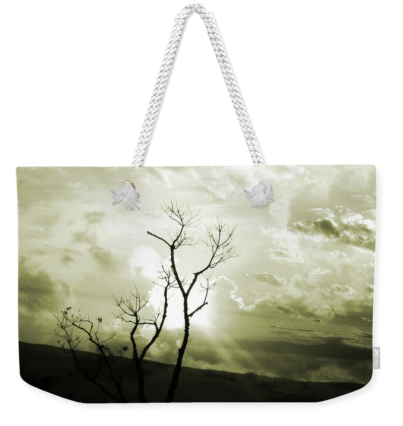 Photograph Weekender Tote Bag featuring the photograph Alive by Munir Alawi
