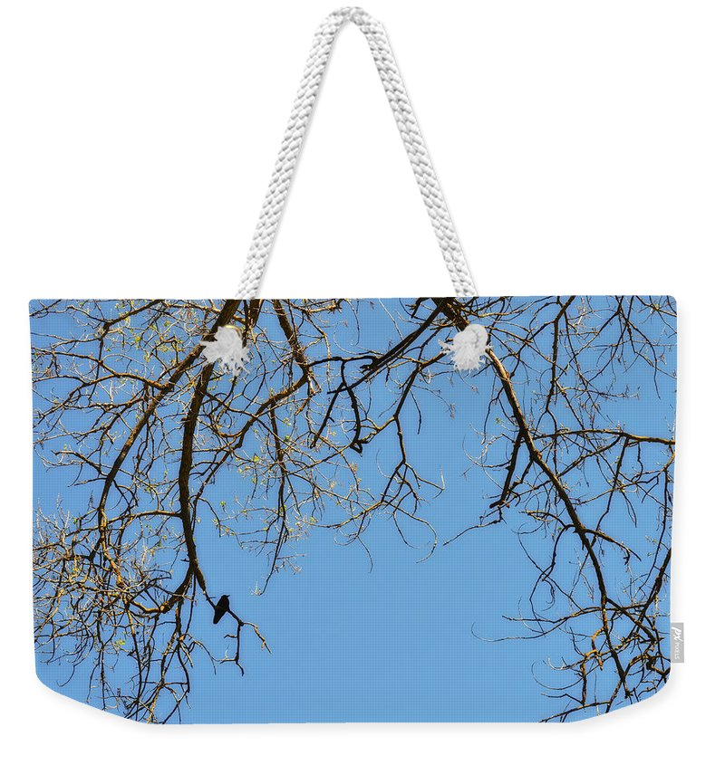 Crow Weekender Tote Bag featuring the photograph All Alone by Donna Blackhall