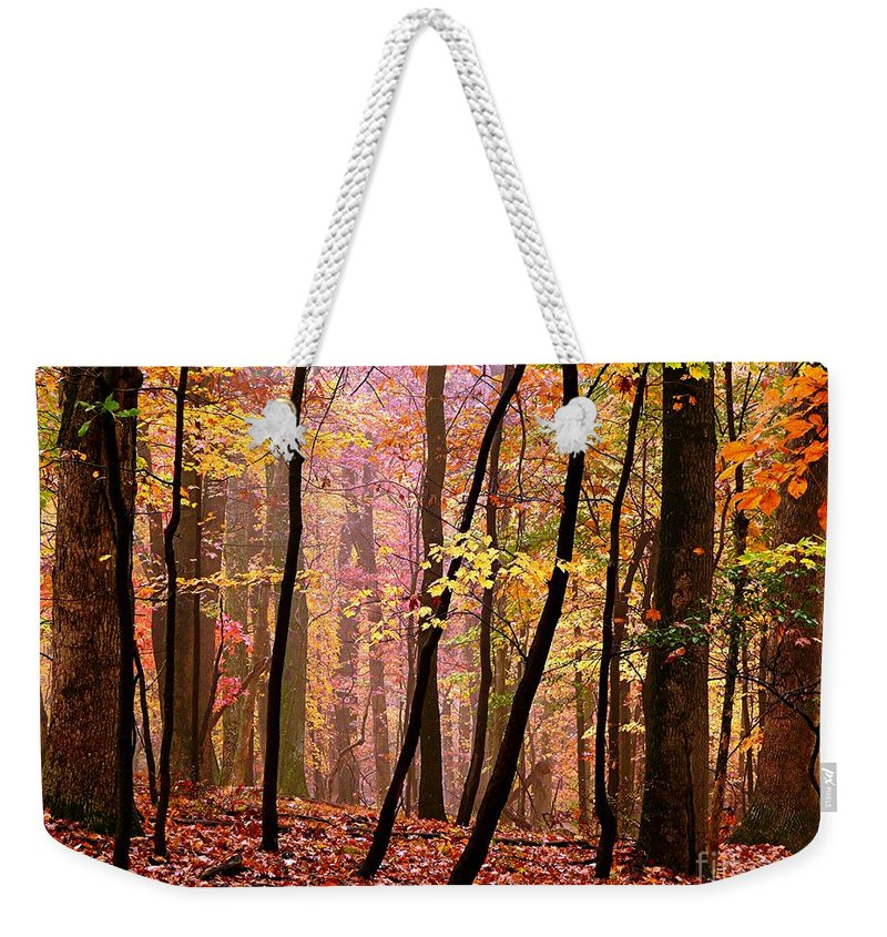 Fall Weekender Tote Bag featuring the photograph All Fall by Jefferson Hobbs