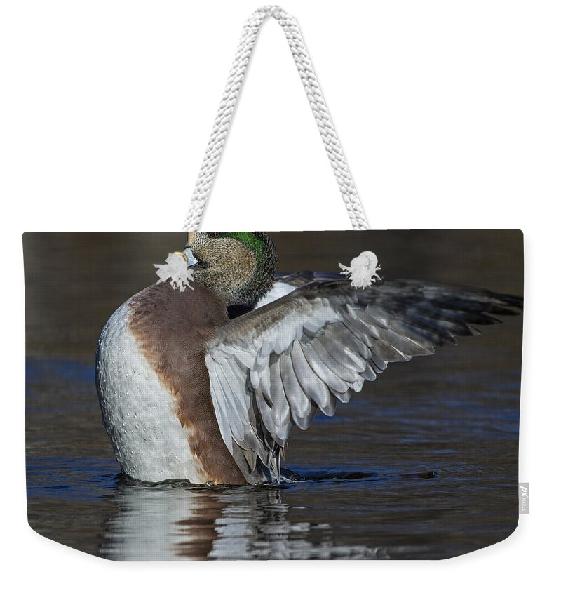 American Wigeon Weekender Tote Bag featuring the photograph All Heart by Tony Beck