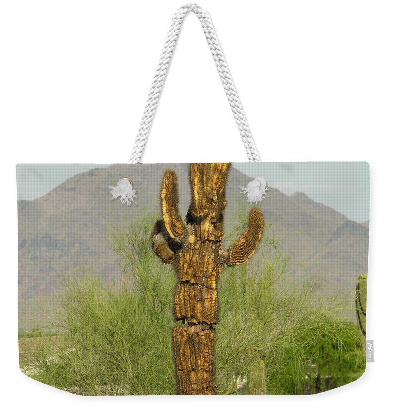 Cacuts Weekender Tote Bag featuring the photograph All I Needed Was A Single Drop Of Water by Diane Greco-Lesser
