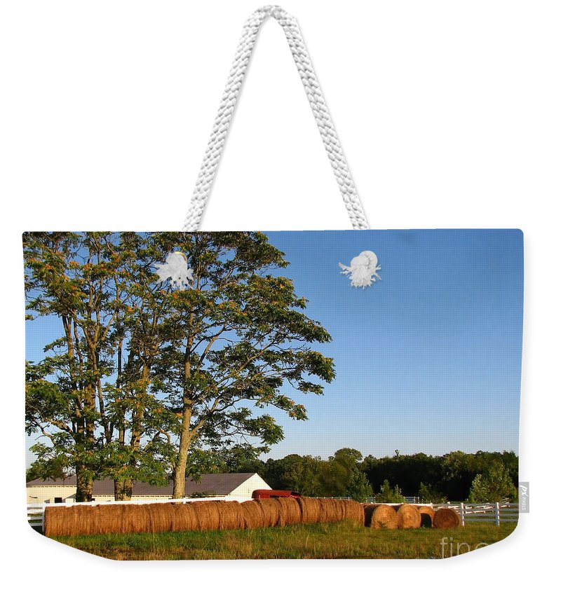 Landscape Weekender Tote Bag featuring the photograph All In A Row by Todd Blanchard