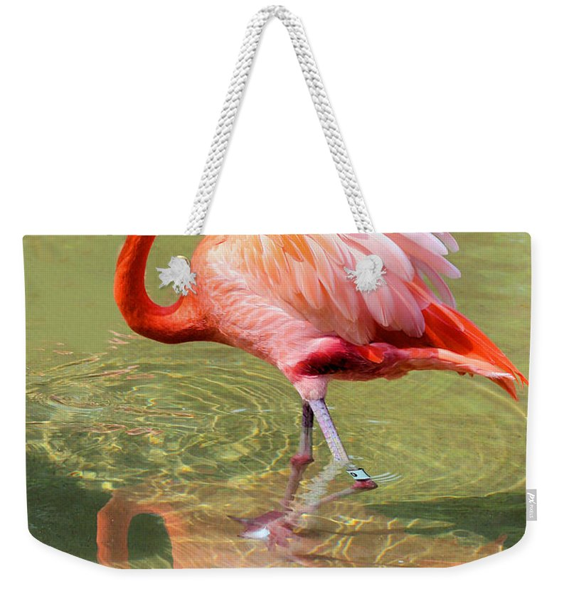 Flamingo Weekender Tote Bag featuring the photograph All Ruffled Up by Kristin Elmquist