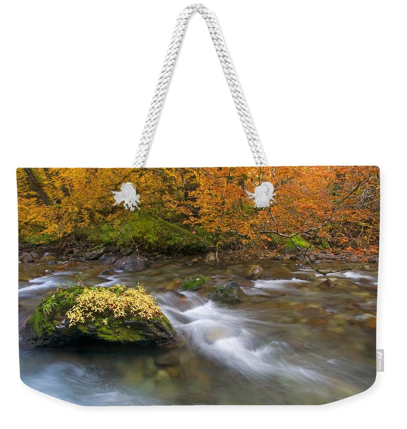 Stream Weekender Tote Bag featuring the photograph All That Is Gold by Mike Dawson